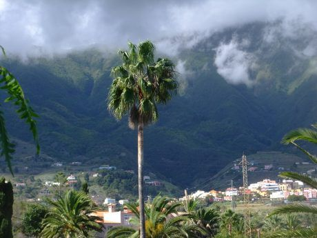 Lovely La Palma